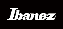 Rental of Ibanez acoustic guitars & acoustic guitars in Mallorca with best price guarantee